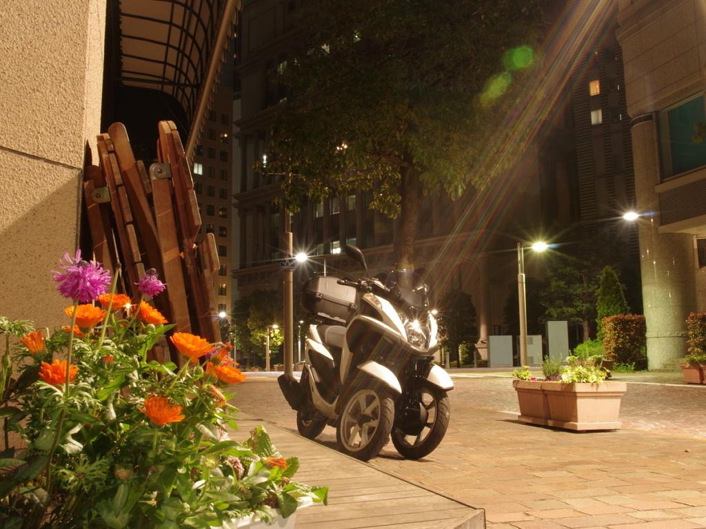 トリシティ 汐留イタリア街 写真